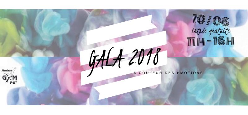 Gala 2018 La couleur des émotions